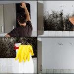 5 Έξυπνα Tips για να εξοντώσεις τη μούχλα στο Σπίτι σου!