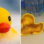 Τα πλαστικά παπάκια του μπάνιου κρύβουν ιδιαίτερα επικίνδυνα βακτήρια