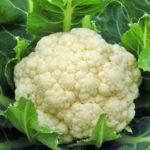 Τα 15 πιο «καθαρά» τρόφιμα χωρίς φυτοφάρμακα!