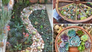 ΜΙΚΡΟΣ ΚΗΠΟΣ: Φτιάξε μικρά κηπάκια στο σπίτι σου!