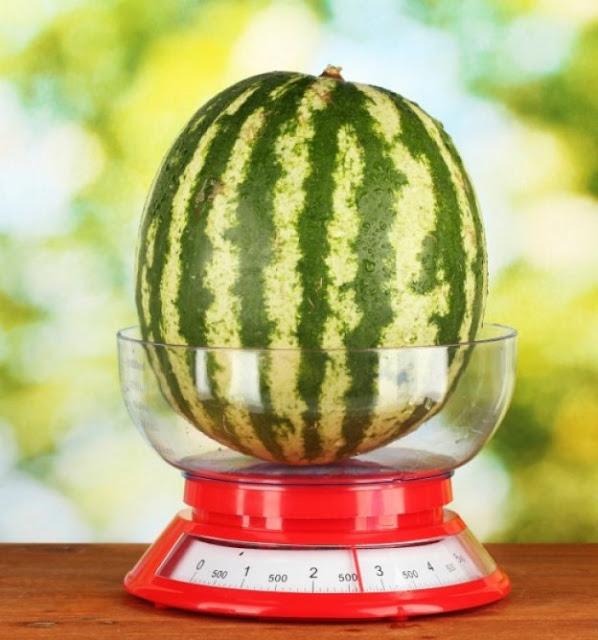 το βάρος και ο όγκος του καρπουζιού παίζουν σημαντικό ρόλο στην επιλογή του